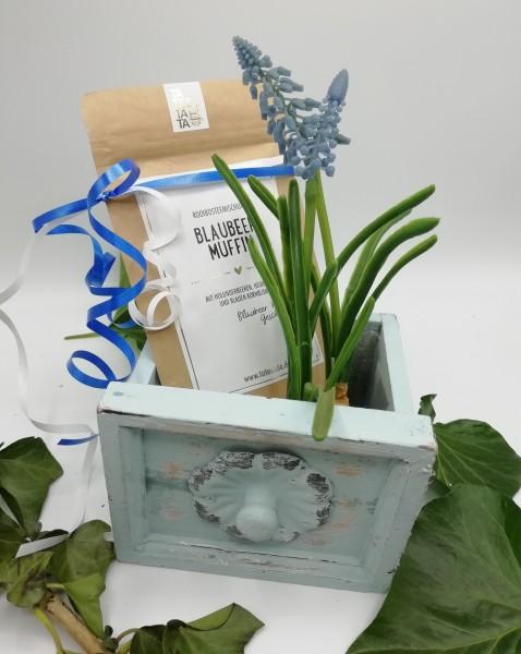 """Set """"Pflanzenkasten blau"""""""